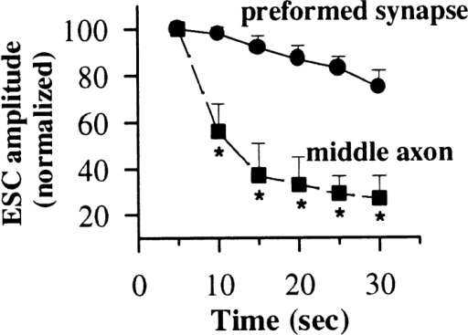 Tetanus-induced depression at the preformed synapses (circles) and along the  axonal shaft (squares). Amplitudes of ESCs during a 30-s tetanic stimulation at 5 Hz were  averaged in 5-s bins. Each data  point (± SEM) represents the  values averaged for 10 recordings from preformed synapses and 12 recordings from the middle  axon. A significant difference between the two series of experiments was found as soon as 5 s after the onset of stimulation. *,  P < 0.05, ANOVA.