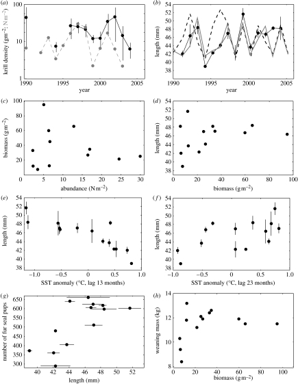 (a) Interannual changes in krill biomass (solid black line, in g m−2, with 95% CIs) at South Georgia (British Antarctic Survey data) and numerical abundance (Atkinson et al. 2004) in the southwest Atlantic sector (grey dashed line, in N m−2). (b) Interannual changes in mean krill length in the diet of Antarctic fur seals at South Georgia in March (black solid line); CIs (95%) are shown for the mean krill length in March, based on weekly samples (Reid et al. 1999). The dashed line shows the model-estimated changes where recruitment of post-larval krill is driven by a functional relationship based on the sea surface temperature (SST) anomaly 2 years previously and the grey line is based on anomalies 1 year previously. (c) Relationship between the abundance of krill in the South Atlantic and the biomass of krill at South Georgia. (d) Relationship between the mean krill length (in mm) in the diet of Antarctic fur seals at Bird Island, South Georgia (in March) and the biomass of krill at South Georgia. (e) Relationship between the mean krill length in the diet of Antarctic fur seals at Bird Island, South Georgia (in March) and SST anomalies in the South Georgia region 13 months earlier (n=14, adjusted n=12.5; r=−0.85, rs=−0.86, r12,0.05=0.55, rs12,0.05=0.59). (f) As given for (e) but for 23 months earlier (n=14, adjusted n=12.9; r=0.60, rs=0.60, r12,0.05=0.55, rs12,0.05=0.59). (g) Relationship between the number of Antarctic fur seal pups produced and the mean length of krill (in mm) in the diet of adult Antarctic fur seals at Bird Island, South Georgia. (h) Relationship between the Antarctic fur seal pup weaning mass and the biomass of krill at South Georgia.