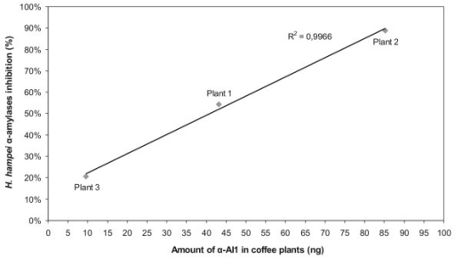Comparison between the amount of α-AI1 in coffee transgenic plants and the inhibition rate of H. hampei α-amylases measured by DNS assay. In the DNS assay, 30 μg of the total seed protein extract was used, and the α-AI1 quantity in these extracts was measured using ELISA.