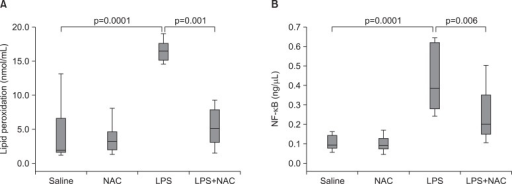 The effects of N-acetylcysteine (NAC) of nuclear factor κB (NF-κB) and lipid peroxidation in lipopolysaccharide (LPS) induced acute lung injury. (A) Lipid peroxidation concentrations in lung tissue. In NAC treatment (LPS+NAC) group, lipid peroxidation concentration significantly decreased than that in LPS group. (B) NF-κB concentrations in lung tissue. NF-κB concentration in NAC treatment group significantly decreased more than that in LPS group. Box table: median (25~75%); except out-layer data.