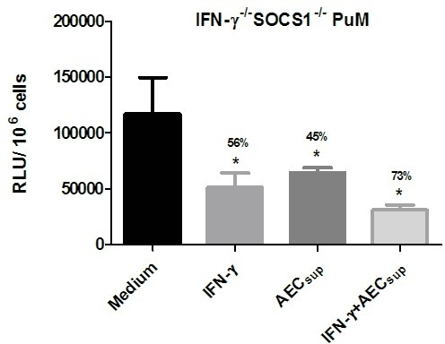 Impaired intracellular control of BCG growth by PuM upon IFN-γ treatment is regulated by SOCS1.PuM from IFN-γ-/- SOCS1-/- mice were infected with GFP-BCG. After infection, cells were left untreated or treated with IFN-γ, AECsup and IFN-γ + AECsup for 48 h. Bacterial growth was evaluated by determining RLU. Data are shown as % reduction of phagocytosed bacteria evaluated as RLU. Values are means ± SD of the mean of a representative experiment from 2 independent experiments with 4 replicates. The differences between groups of IFN-γ-/- SOCS1-/- PuM were analyzed using a one-way ANOVA followed by Bonferroni's Multiple Comparison Test. * significantly different from medium control, P<0.05.
