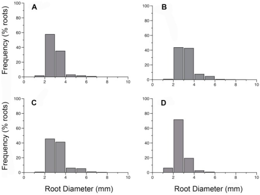 Frequency distribution of root diameters (mm) for first and second order roots of (A) L. japonica, (B) L. sempervirens, (C) F. alnus and (D) R. alnifolia.