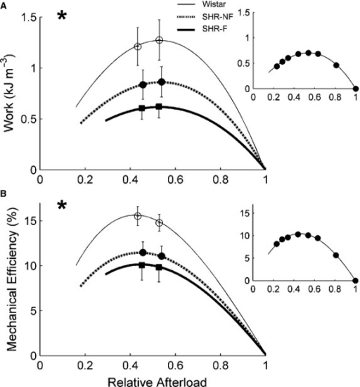 Work output and efficiency as functions of relative afterload. Average dependences of work (A) and mechanical efficiency (B) on relative afterload. *P < 0.05 for Wistar versus both spontaneously hypertensive rat (SHR) groups, +P < 0.05 for failing SHR (SHR‐F) versus nonfailing SHR (SHR‐NF). Note that peak mechanical efficiency occurred at relative afterloads (0.45) lower than that for peak work (0.52). Peak values (mean ± SE) of variables were superimposed on appropriate panels as an indication of the variability of each average regression line. Note that the greatest SE occurred at peak values. The insets show data from a representative SHR‐F trabecula.