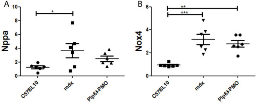 Gene expression analysis for markers of cardiac injury in exercised mdx mice following Pip6f-PMO treatment.RT-qPCR analysis of Nppa (A) and Nox4 (B) in heart tissue normalised to C57BL/10 cohort. The untreated mdx exercised cohort reveals elevated expression of these injury markers whereas there is partial normalisation for the Pip6f-PMO cohort. Statistical significance was determined using ANOVA followed by Tukey post-hoc test (*** = P < 0.001, ** = P < 0.01, * = P < 0.05).
