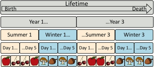The environment for one individual's lifetime.A lifetime lasts 3 years. Each year has 2 seasons: winter and summer. Each season consists of 5 days. In each day, each individual sees all food items available in that season (only two are shown) in a random order.