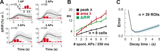 Single AP detection in YC2.60-expressing neurons at physiological temperature and performance of the OOPSI deconvolution algorithm.(A) Using whole-cell patch recording of YC2.60-expressing PNs in cortical slice cultures, we confirmed that YC2.60 reliably resolved spontaneous single AP firing at physiological temperature (∼32°C), in line with previous reports (Yamada et al., 2011). Gray: Individual trials: Black: Average. Inset: Zoomed view of bar graph from 1 AP subpanel. Note the decay in ΔR/R by ∼2/3 within 1–2 s. Responses from single PN. (B) Peak and integral of instantaneous rate λ as well as peak ΔR/R linearly increase with the number of spontaneous APs/250 ms (n = 7 neurons). (C) Single movie data showing that the minimum reconstruction error of the deconvolution was found at decay time τ = 1.5 s (n = 39 ROIs).DOI:http://dx.doi.org/10.7554/eLife.07224.004