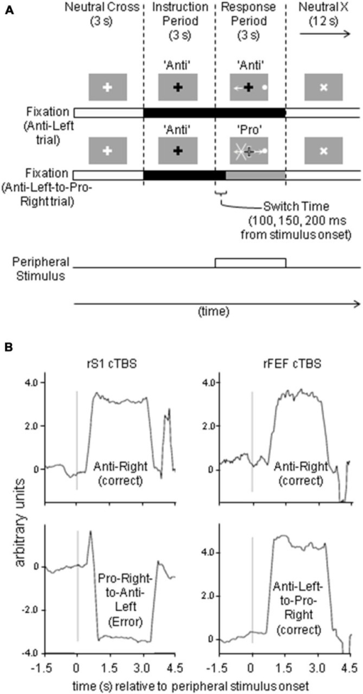 (A) Paradigm and stimuli timing, illustrating representative anti-left and anti-left-to-pro-right trials, with the peripheral stimulus on the right. (B) Sample eye traces from FEF study.