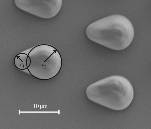 Different radii of the drop-like microstructures as defects on the glass slide surface. The smaller radius r1 is about 2 µm and the larger radius r2 is about 4.5 µm.