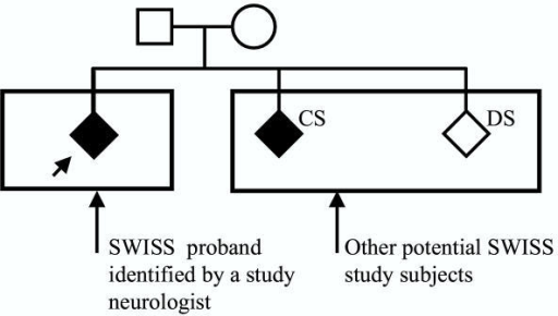 Sample study pedigree for the Siblings With Ischemic Stroke Study (SWISS). Solid symbols indicate ischemic stroke; CS, concordant sibling; and DS, discordant sibling.