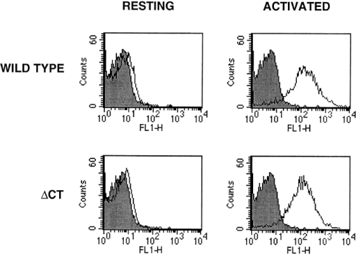 Flow cytometry analysis of P-selectin expression on  platelets. Wild-type and ΔCT platelets were stained for membrane P-selectin and analyzed by flow cytometry. In the resting  state, platelets of both genotypes displayed virtually no P-selectin  on their plasma membranes. Thrombin activation induced in  wild-type as well as in mutant platelets a similar increase in mean  fluorescence with ∼90% of P-selectin–positive platelets. Representative histograms are shown. Shaded area, negative control  staining with only the FITC-conjugated goat anti–rabbit IgG.