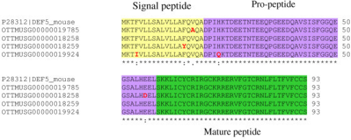 The polymorphic Defcr5 locus. A protein alignment between all potential Defcr5 copies and P28312.2. Variation in amino acids is highlighted in red.