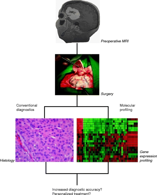 Outline of possible application of microarray technology in the diagnostic armamentarium