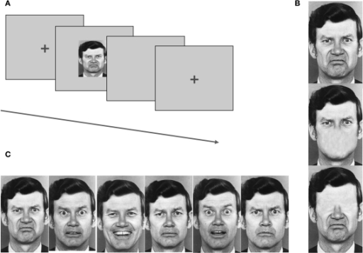 recognition of facial emotions using ldn pattern Facial expression recognition using a neural network ized as a problem of pattern recognition in human cog- facial expressions as emotional and.