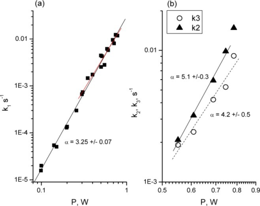 Power dependence of the(a) first step rate k1 and (b) reversestep rate k2 andsecond step rate k3 for mPlum in solutionupon irradiation with a Ti:Sa amplifier.