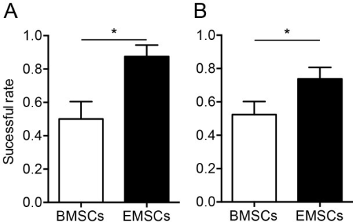 Successful rates in establishing canine EMSCs and BMSCs. The successful rate wassignificantly lower in the isolation of BMSCs compared to EMSCs at both NTUVH (A) andstray animal shelters (B). * P<0.05