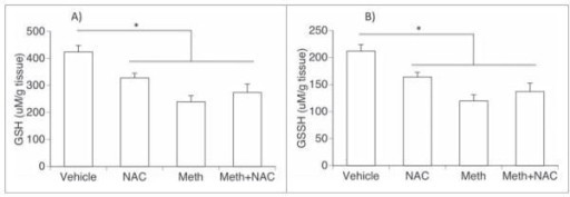 Effects of NAC and Meth on intra-BAT glutathione levels - BAT tissue was harvested 2 hours after the injection of Meth or Vehicle, deproteinized and processed for measurements of (A) reduced glutathione (GSH) and (B) oxidized glutathione (GSSH), using a colorimetric assay. Results represent the average ± SD, analyzed by One-Way ANOVA, followed by Bonferroni's test. *p < 0.05, compared to indicated groups.