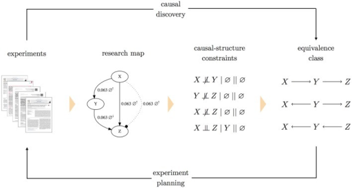 A system diagram for planning experiments with causal graphs. In this approach to experiment planning, research articles are annotated to produce a research map. Each edge in the research map is then translated into a causal-structure constraint of the form A ⫫ B / C // J, where C is a conditioning set and J is the intervention set. Both C and J can be the empty set (∅), as is the case for the non-intervention experiments depicted above (indicated by ∅↑ and ∅↓). To handle conflicting constraints, each causal-structure constraint is assigned a weight. A maximum-satisfiability solver then finds the causal graph that satisfies these constraints, while minimizing the sum of weights of (conflicting) unsatisfied constraints. With this one optimal graph, a forward inference method is used to identify the complete equivalence class of causal graphs that all imply the same (in)dependence relations. This equivalence class is then used as the basis for experiment planning. (Note that in the research map, the two experiments involving X and Z are shown as separate edges for clarity).