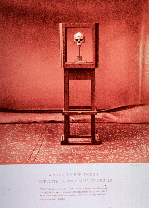 <p>Black and white print of a skull framed in an apparatus ready for photography. This is print no. 5 that appears in &quot;On composite photography as applied to craniology; on measuring the cubic capacity of skulls, memoirs of the National Academy of Sciences; volume 3, 14th memoir&quot; by J.S. Billings and Washington Matthews.</p>