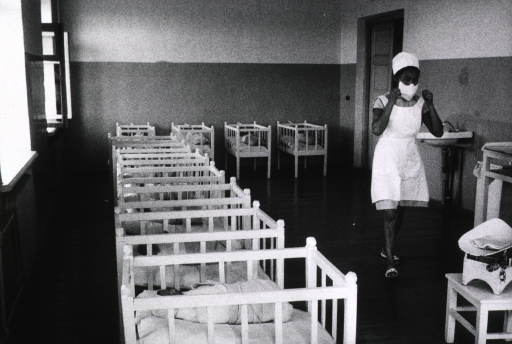<p>Interior view of a nursery.</p>