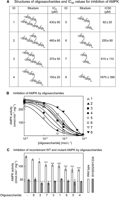 Inhibition of Rat Liver AMPK by Synthetic Branched Oligosaccharides(A) Table showing the identification (ID) number, structure, and estimated IC50 ± SEM.(B) Inhibition of purified rat liver AMPK by oligosaccharides. These data were used to generate the IC50 values shown in (A), and the curves were drawn using the best-fit parameters. A key to the ID of each oligosaccharide is shown on the right.(C) Inhibition of recombinant wild-type and W100G/W133A mutant AMPK (α1β1γ1 complex) by synthetic oligosaccharides, numbered as in (A) and (B). The data are presented with the oligosaccharides in order of increasing potency from left to right; results are mean ± SEM (n = 3). Significant differences ± oligosaccharide for the wild-type by two-way ANOVA. ∗p < 0.05; ∗∗∗p < 0.001.
