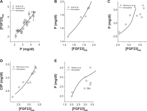 Linkage of the FGF23 concentration in serum ([FGF23]AB) and the P concentration ([P]) in serum. A) [P] in healthy populations. B) [P] in patients with tumor induced osteomalacia. (C) and (D) [P] and the renal threshold for P in patients with Fibrous Dysplasia. E) [P] in patients with XLH.