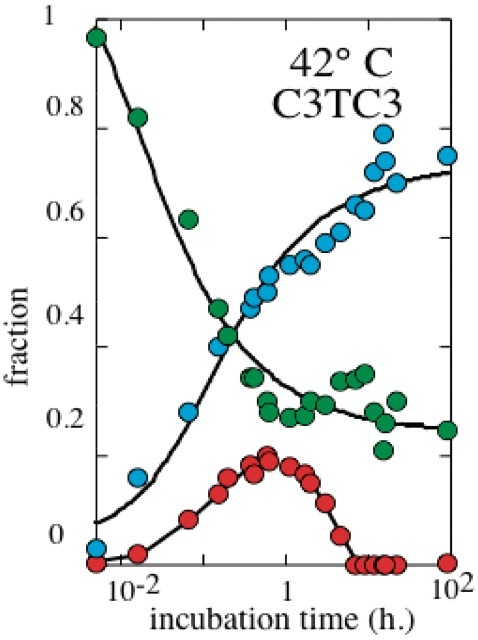 Evolution versus time at 42°C of the sms (red), tetramer (cyan) and monomer + dimer (green) fractions in a 1 mM C3TC3 solution initially monomeric. Sms accumulation in the early stage of the kinetics and final disappearance is typical of kinetics trapping.