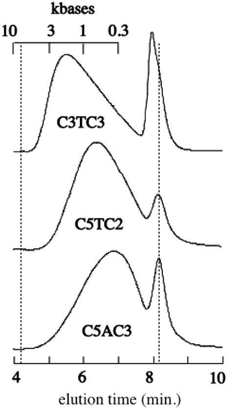 GPC-1000 chromatograms at 20°C of a 9 mM C3TC3 solutions and of 3 mM C5TC2 and C5GC3 solutions at equilibrium. The top horizontal scale, drawn according to the column calibration, indicates the elution positions of nucleic acids containing the indicated base numbers. The non-resolved tetramer, dimer and monomer in equilibrium with the sms are eluted in the peaks at 8.2 min. The exclusion and permeation times are indicated by dotted lines.