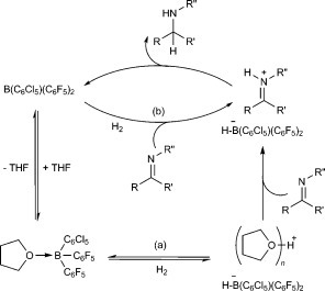 Proposed mechanisms for hydrogenation of imines by activation of H2 using either a) THF solvent or b) substrate as a frustrated Lewis base.