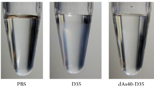 5′ addition of dAs40 sequence to D35 also prevents visible large aggregate formation in PBS. The indicated ODNs were initially dissolved in distilled water at a concentration of 10 mg/mL (all ODNs were completely solubilized with water and the solutions were clear) and further diluted with PBS at a final concentration of 1.0 mg/mL. Solutions were stored at 4°C for at least 18 hours and then images were captured. D35 developed visible white turbidity during this incubation. In contrast, dAs40-D35 did not develop visible white turbidity.