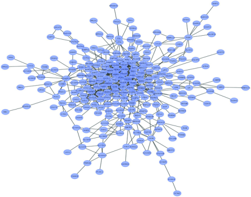Protein-protein interaction network of ulcerative colitis DE genes. A total of 314 nodes (purple ovals), 882 edges (lines between nodes) and 341 DE genes were identified, where nodes represent gene signatures and edges between nodes represent interaction between genes in the network. Among the nodes, CD44 exhibited the highest degree (52), followed by IL1B (50) and MMP9 (49). Node sizes correspond to the absolute values of the fold change of the DE genes. Edges were derived from he Search Tool for the Retrieval of Interacting Genes/proteins database. DE, differentially expressed.