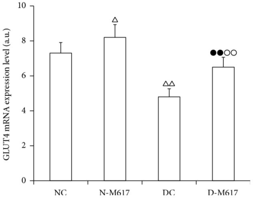 The i.c.v. injection of M617 significantly elevated GLUT4 mRNA expression levels in adipose cells (n = 8). The GLUT4 mRNA expression levels were higher in diabetic M617 (D-M617) and nondiabetic M617 (N-M617) groups as compared with diabetic controls (DC) and nondiabetic controls (NC), respectively. The expression levels were lower in D-M617 and DC groups compared with N-M617 and NC groups, respectively. The data shown are the means ± SEM. △P < 0.05, △△P < 0.01 versus NC; ●●P < 0.01 versus N-M617; ○○P < 0.01 versus DC.