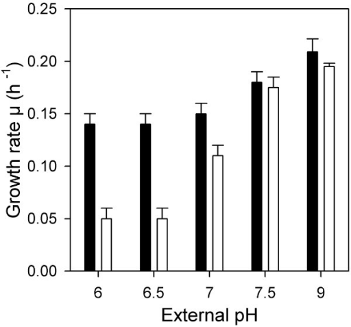 The pH dependent impact of cysteine on growth of C. glutamicum. Wild type cells were exposed to different pH values in MTP and growth rates were determined in absence (black bars) or presence 10 mM cysteine (white bars).