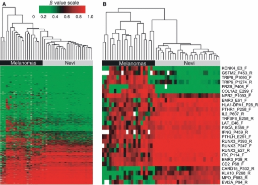 hierarchical clustering of methylation β values using open i