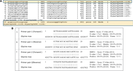 (A) PRIMEGENS-v2 result showing primer sequences, location of the primer pairs with respect to the target gene, amplicon/product size, number of hybridizations and target gene accession numbers for PM18 (Glyma03g34680). (B) Megablast results for forward (A and C) and reverse (B and D) primers in primer pair-1 and primer pair-2 of PM18.