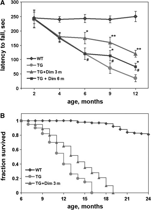 Lifespan and motor performance of control and dimebon-treated γ-synuclein transgenic mice. Thy1mγSN transgenic mice (TG) were tested on accelerating rotarod after 3 and 6 months of drug administration in both dimebon-treated groups, and additionally after 9 months in the group with an early start of treatment. Line graphs show means ± SEM of latency to fall from the rotarod (a). Statistically significant differences between the control group of transgenic animals and each of the treated groups (*P < 0.05, **P < 0.01) as well as between dimebon-treated groups (#P < 0.05) were detected at all time points. b Kaplan–Meier survival analysis of dimebon-treated and control Thy1mγSN transgenic mice demonstrates increased survival in the group that received dimebon from the age of 3 months. In both panels, results for wild-type animals (WT) animals are given for reference