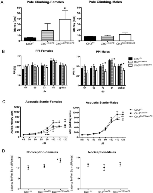 Subtle genotypic differences in performance of young adult Cln3Δex7/8 mice in sensory and motor neurological assays. Shown are results of behavioural analyses in a vertical pole-climbing test (A), prepulse inhibition to the acoustic startle response (PPI) (B), acoustic startle response (C), and thermal nociception (D) for female (left) and male (right) littermate control (Cln3+/+), heterozygous (Cln3+/Δex7/8) and homozygous (Cln3Δex7/8/Δex7/8) mice (n = 9–10 mice per group). Data are presented as mean ± standard error of the mean (SEM). (A) Homozygous Cln3Δex7/8 female mice had an increased latency to descend the pole, compared to female wild-type or heterozygous littermates. In a Kruskal-Wallis test, the genotype effect was p<0.01 (*) for females, with or without heterozygous Cln3Δex7/8 mice included in the analysis. (B) Mean %PPI to an acoustic startle, with four prepulse intensities (67, 69, 73, 81 decibels [db]), or with all prepulse intensities averaged ('global') are shown. *, ANOVA, p<0.05. (C) The mean ± SEM of the acoustic startle response to 70–120 db sounds is shown for littermate control (Cln3+/+, circles), heterozygous (Cln3+/Δex7/8, squares) and homozygous (Cln3Δex7/8/Δex7/8, triangles) Cln3Δex7/8 mice. NS = no startle sound. For females, ANOVA, genotype effect was F(7,11) = 4.63, p<0.05, and post-hoc tests revealed that this was significant at 90 and 100 db (*p<0.05, ***P<0.001). No statistically significant differences were detected in the acoustic startle response of males. (D) The mean ± SEM latency to the first sign of pain (seconds = s) in a hot plate assay is shown. *, ANOVA genotype effect p<0.05.
