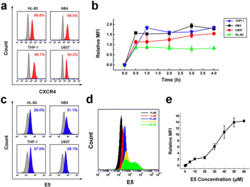 Affinity and kinetic binding of E5 to multiple leukemia cell lines.(a) The CXCR4 level in HL-60, NB4, THP-1 and U937 leukemia cells analyzed by flow cytometry using antibody for CXCR4. (b) Time course of E5 binding amount in the different cells at 10 µM. (c) Affinity of E5 to the different cells at 4 h at 10 µM. Results were obtained from flow cytometry analysis using biotin-labeled E5 and streptavidin-conjugated FITC. (d) and (e) Binding amount of E5 to HL-60 cells after 2 h incubation. The data are presented as mean ± SD (n = 3).