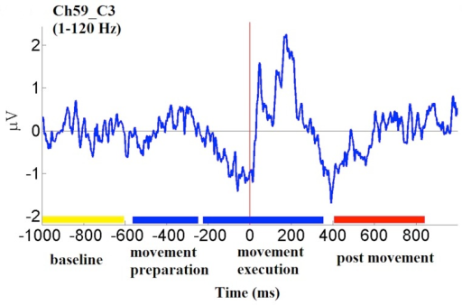 Time-course of average EEG trace (i.e., event-related potential) from channel C3 (bandpass: 1–120 Hz) during right thumb movement in one subject.Color bars on horizontal axis mark categorical time periods (see text).
