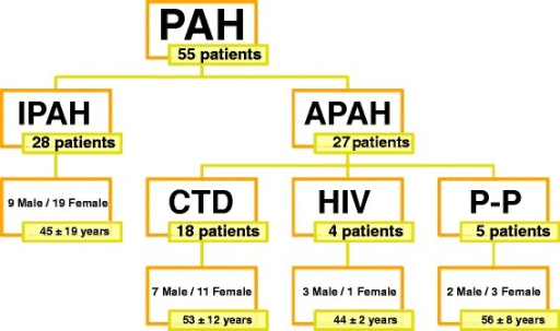 Disposition of the study population. This figure shows the total number of patients included in this study separated by PAH type. PAH: Pulmonary Arterial Hypertension; IPAH: Idiopathic Pulmonary Arterial Hypertension; Associated Pulmonary Arterial Hypertension; CTD: connective tissue disease; HIV: Human Immunodeficiency virus; P-P: Porto-pulmonary hypertension.
