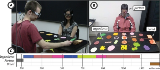 (A) The setup of the data collection experiment in the sandwich-making task. (B) A view from one participant's eye-tracking glasses, showing their scan path throughout a reference-action sequence. (C) A timeline view of the gaze fixations to ingredients, the partner, and the bread shown in the scan path in (B).
