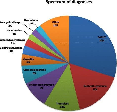 Spectrum of clinical diagnoses reviewed by paediatric nephrologists during telehealth consultations