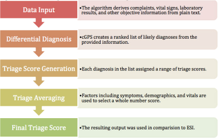 Overview of the algorithm used to derive the triage score.