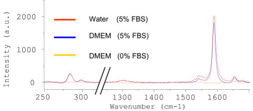 Raman spectra acquired from CoMoCAT SWNT dispersions (10-min probe sonication and two 2-min centrifugations) prepared in various solutions (water or DMEM ± FBS); all spectra were normalized to the same intensity scale.
