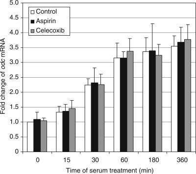 The effects of celecoxib and aspirin on the relative mRNA levels for ODC during serum stimulation. Untreated serum-starved HTC-IR cells and those treated for 24 h with 5 μg ml−1 celecoxib or 5 μg ml−1 aspirin were exposed to 15% FBS for 0, 15, 30, 60, 180, and 360 min. After harvesting the cells, total RNA was isolated and used in RT. PCR was carried out using [α32P]dCTP (0.5 μCi reaction−1) and odc primers (sense: 5′-GAGCGCTGTGACCTGCCTGA-3′; antisense: 5′-GGCAGGGTGCTGGCATCCTG-3′). PCR products were resolved by native PAGE and were quantified using a phosphorimager. Results are expressed as percentage mRNA level from serum-starved, untreated cells and represent means±s.d. of two separate experiments.