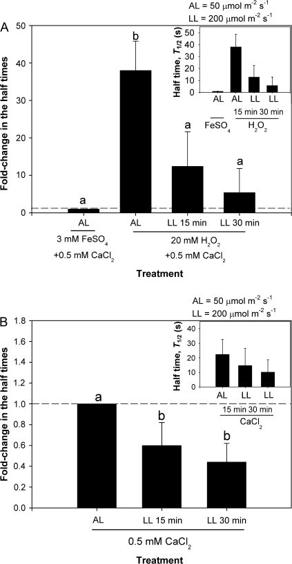 Low light (LL) treatment of 200 μmol m−2 s−1 reduced T1/2, at constant turgor, as in the whole-plant experiments of Kim and Steudle (2007). (A) Cells having a T1/2 <2 s at the ambient light (AL) intensity of 50 μmol m−2 s−1 were manipulated to have a T1/2 >2 s by H2O2/Fe2+ treatment as shown in Fig. 3. The increased T1/2 was reduced by 30 min LL treatment by a factor of 7 (different letters indicate significant difference j t-test at P <0.05, n=3 cells). (B) Cells originally having a T1/2 >2 s at AL in CaCl2 solution showed a significant reduction in T1/2 during 30 min LL by a factor of 2 (P <0.05, t-test, n=4 cells). Values are means ±SD and are shown as fold changes. The absolute values of T1/2 are shown in the inset.