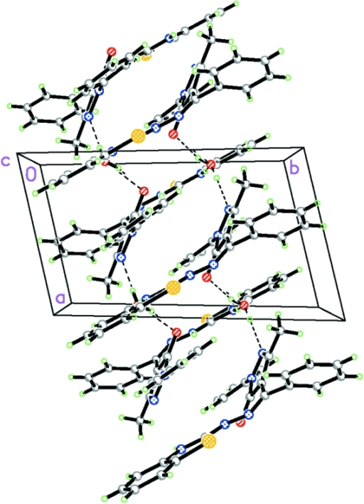 The chain structure formed via hydrogen bonds, indicated by dashed lines.