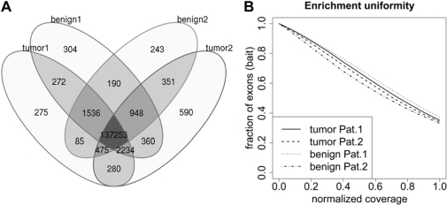 Qualities of the targeted whole exome sequencing approach.(A) Venn diagram of captured exons of normal and tumor samples. Captured exons with at least one read were counted. (B) Representative normalized coverage-distribution plot. The fraction of bait-covered exons in the genome achieving coverages equal or lower than the normalized coverage is indicated on the x-axis. The mean coverage per exon was divided by the mean coverage of all exons.