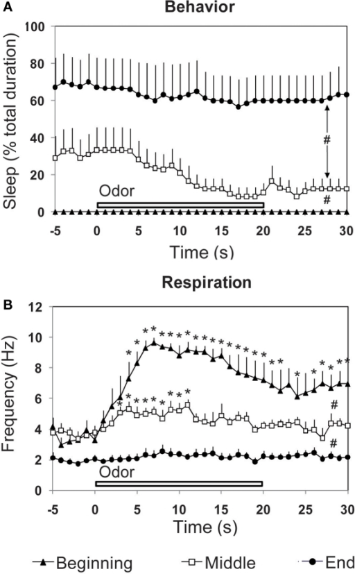 Effect of the introduction of a discrete stimulus (a new odor) on the time-course of (A) behavior and (B) respiration. The three parameters were recorded in odor animals (n = 6), during a 30-s time window centered on odor presentation, at three periods of the experimental session (beginning, middle, and end). #Global significant difference between periods, p < 0.001. *Significant difference with pre-odor baseline, p < 0.05.