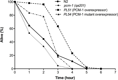 PCM-1 overexpression enhances resistance to severe heat stress (37°C).Survival assays (three trials) were completed for four nematode strains (N2 wild-type, pcm-1 mutant (qa201), PCM-1 overexpressor strain (PL51), mutant PCM-1 overexpressor strain (PL54)). Shown are representative survival curves from one trial. L4 larvae were transferred to NGM + OP50 plates and were allowed to grow at 20°C overnight. The next day, animals were transferred to 37°C and survival was scored every two hours for the first four hours and every hour afterwards until all nematodes were dead. Statistical analysis of these data is given in Table 3 for the three replicates of this experiment.
