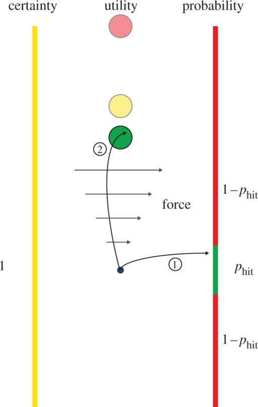 Schematic of experiment. A trial in the 'mean-variance session' consisted of two stages: a decision stage and an effort stage. Three possible circular targets were displayed (green, the closest; red, the furthest; yellow, always at 10 cm from the origin). The target selection from these depended on the outcome of the decision stage. (1) In limited time, subjects chose to move their hand (represented by the small blue circle) either to the left or to the right. The left-hand side was a sure bet and the yellow circular target was always selected. Moving to the right was risky and subjects attempted to hit a small green target. Having established the subjects' Gaussian endpoint distribution for this movement previously, a given target size corresponded to a particular probability of hitting the target phit. Therefore, if subjects chose the risky strategy they would have a probability of phit of hitting the green target-wall and 1− phit of hitting the red target-wall. The size of the yellow wall was always the same. (2) In the effort stage, subjects moved to the corresponding target where they had to push against a stiff spring requiring a force Fright. We varied the probability phit and the red and green circular target positions to establish for which effort level subjects were indifferent between the sure bet and the risky option for five levels of effort variance.